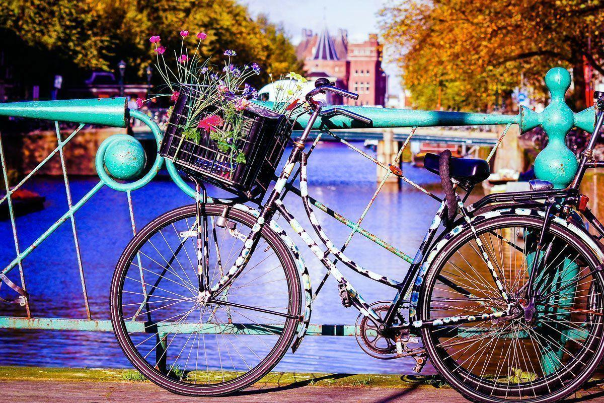 [PLATINUM] Amsterdam i Brema  - Festiwal tulipanów i miasto z baśni Braci Grimm