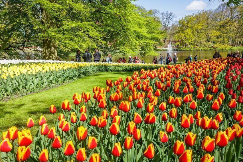 zwiedzanie weekendowe holandia keukenhof amsterdam tulipany funclub-7