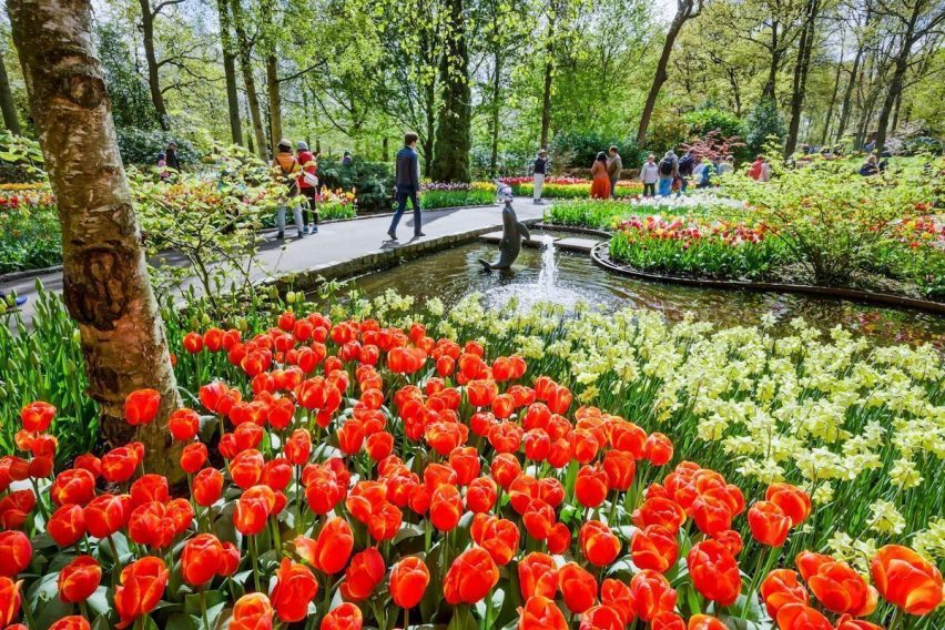 zwiedzanie weekendowe holandia keukenhof amsterdam tulipany funclub-8
