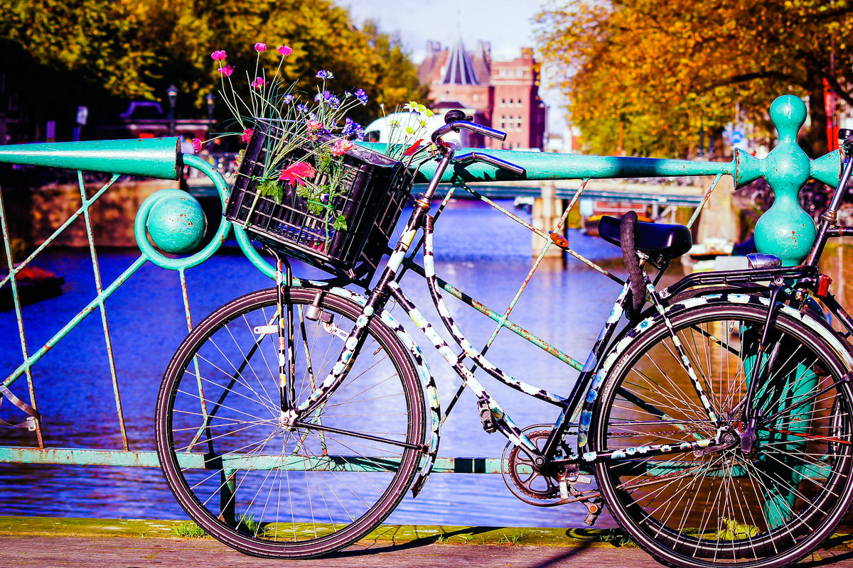 wyjazdy weekendowe holandia amsterdam festiwal tulipanów keukenhof funclub-8